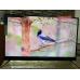 Телевизор BBK 50LEX8161UTS2C 4K Ultra HD на Android, 2 пульта, HDR, премиальная аудио система в Русском фото 9
